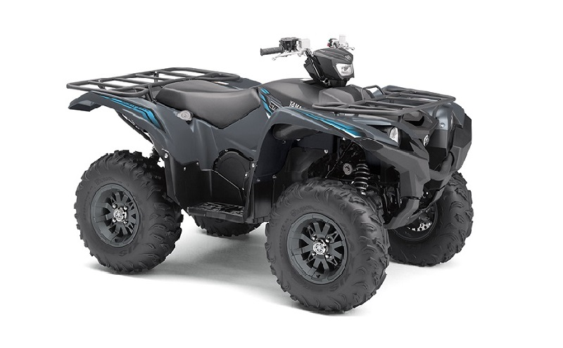 GRIZZLY 700 EPS SE (2019)